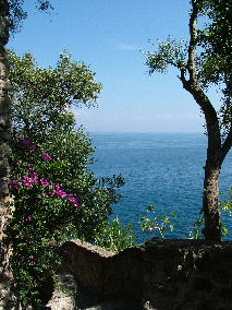 The sea at Ischia